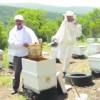 Bandırma'da bal üretim sezonu açıldı