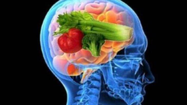 Beyin Diyeti