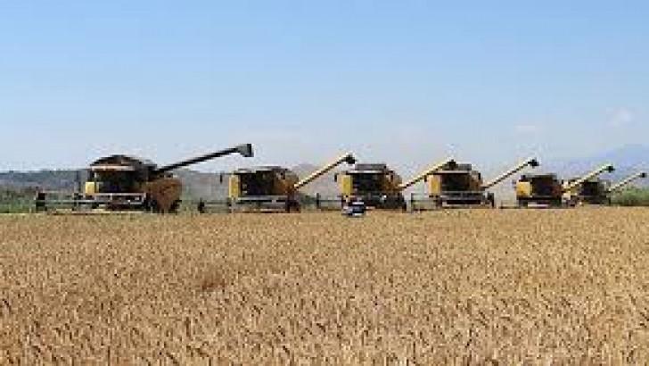 Aralık Ayı Tarımsal Girdi Fiyat Endeksi Verileri Açıklandı
