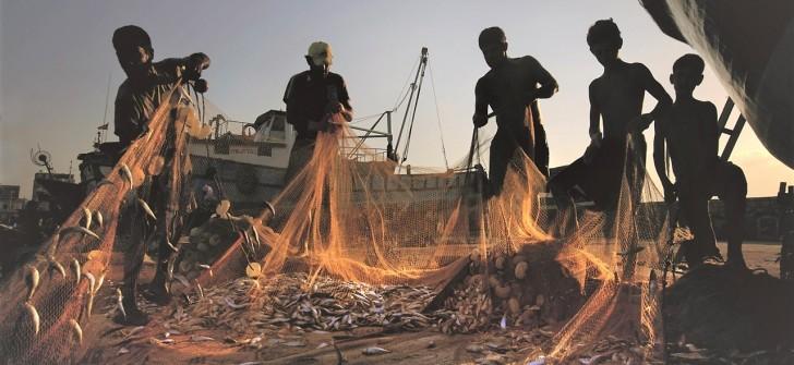Balıkçılıkta av yasağı başladı