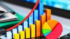 2019 Yılı Mali Aracı Kuruluş İstatistikleri