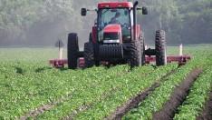 Mart Ayı Tarım Ürünleri Üretici Fiyat Endeksi Verileri Açıklandı